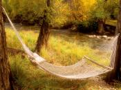 Peaceful Hammock Near a Stream Colorado 1600 x 1200